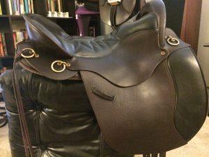 Tucker Saddle pre Effax leather balm.