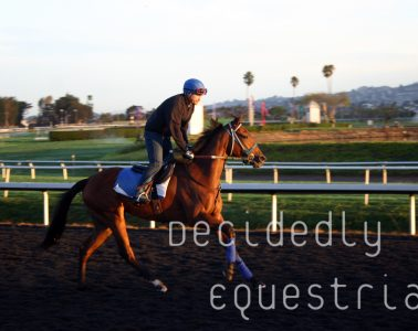 Golden Gate Fields October 2014 morning workouts