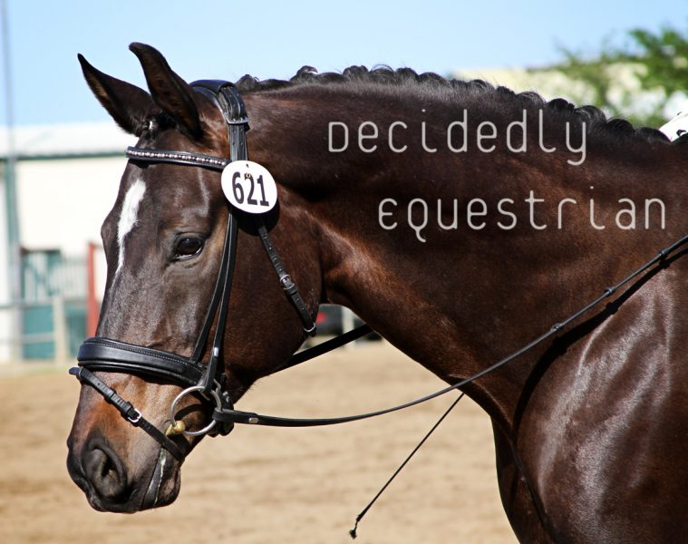 Golden State Dressage Festival