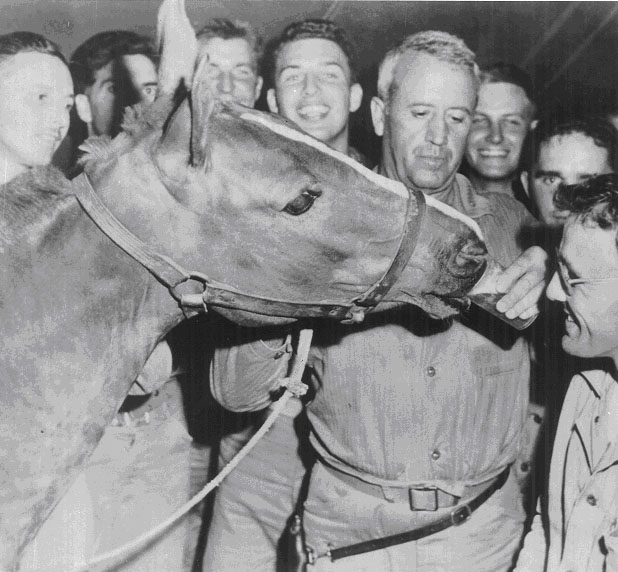 Sgt. Reckless