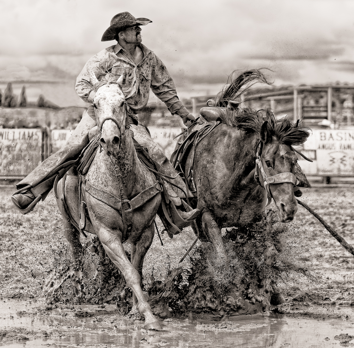 Bev Pettit Photography Spotlight