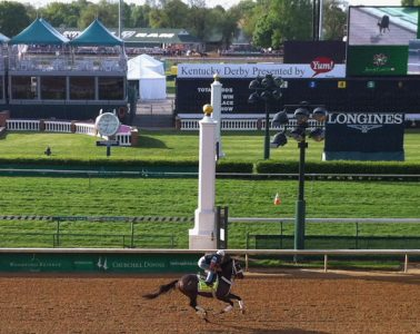 Oxbow Galloping Thursday Before Derby