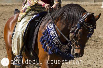 Horse Expo 2016