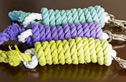 DIY Ombre Dyed Lead Rope