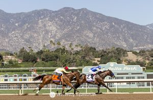Breeders Cup 2016 Drefong Masochistic