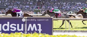 Breeders Cup 2016 Obviously