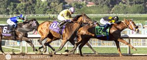 Breeders Cup 2016 Finest City Wavell Avenue