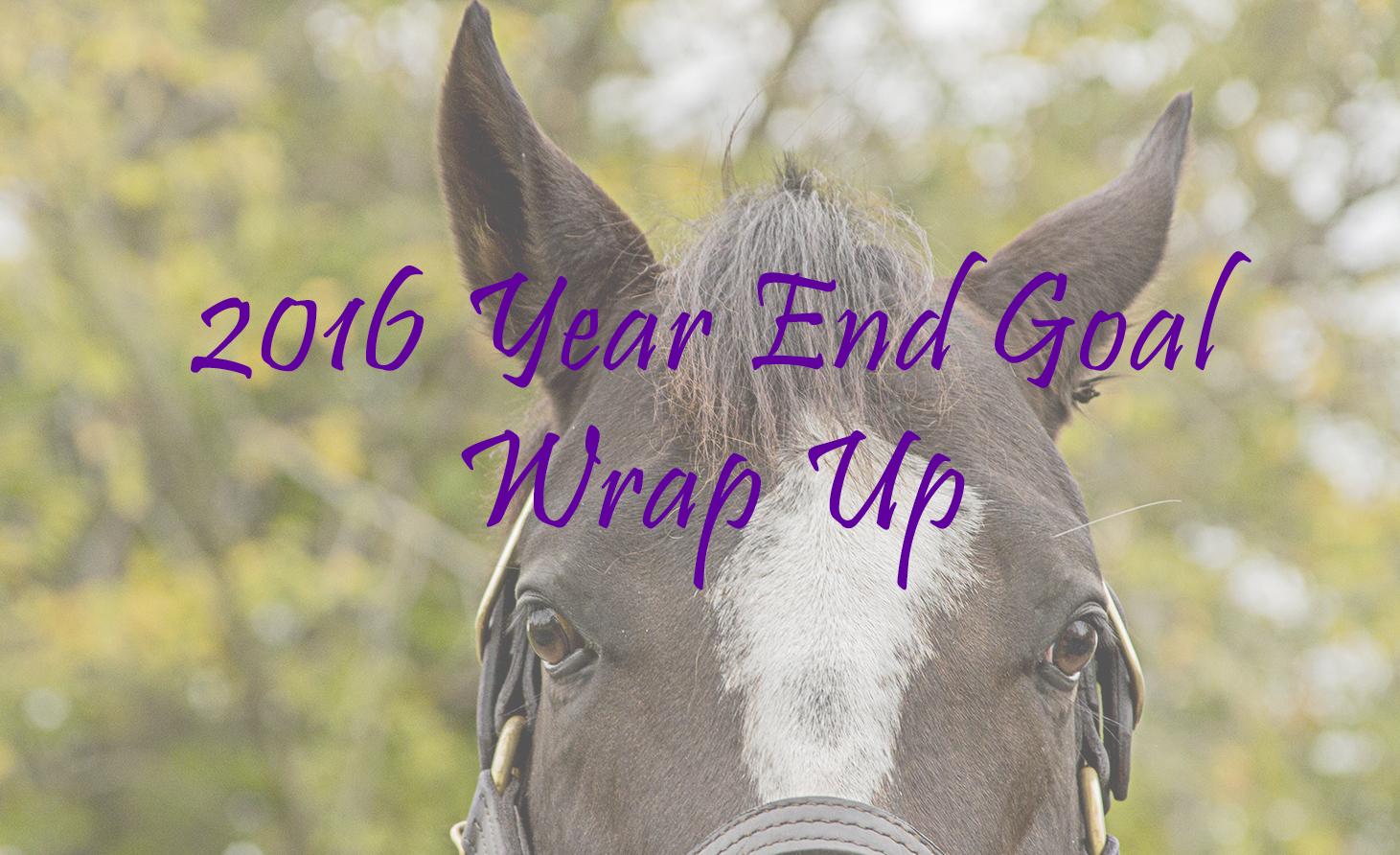 2016 Goal Wrap Up