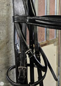 The Simple Equine Love My Leather Balsam Review