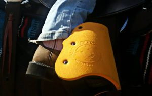Saddle Sidekicks Review