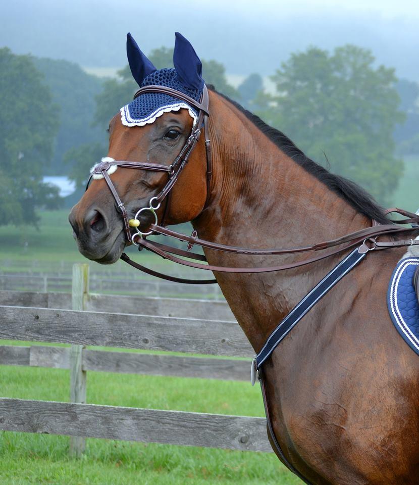 Lund Saddlery Company Spotlight