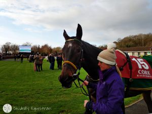 Finding Horses While Traveling - Ireland - Cork Racecourse
