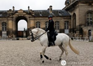 Finding Horses While Traveling - Chantilly France