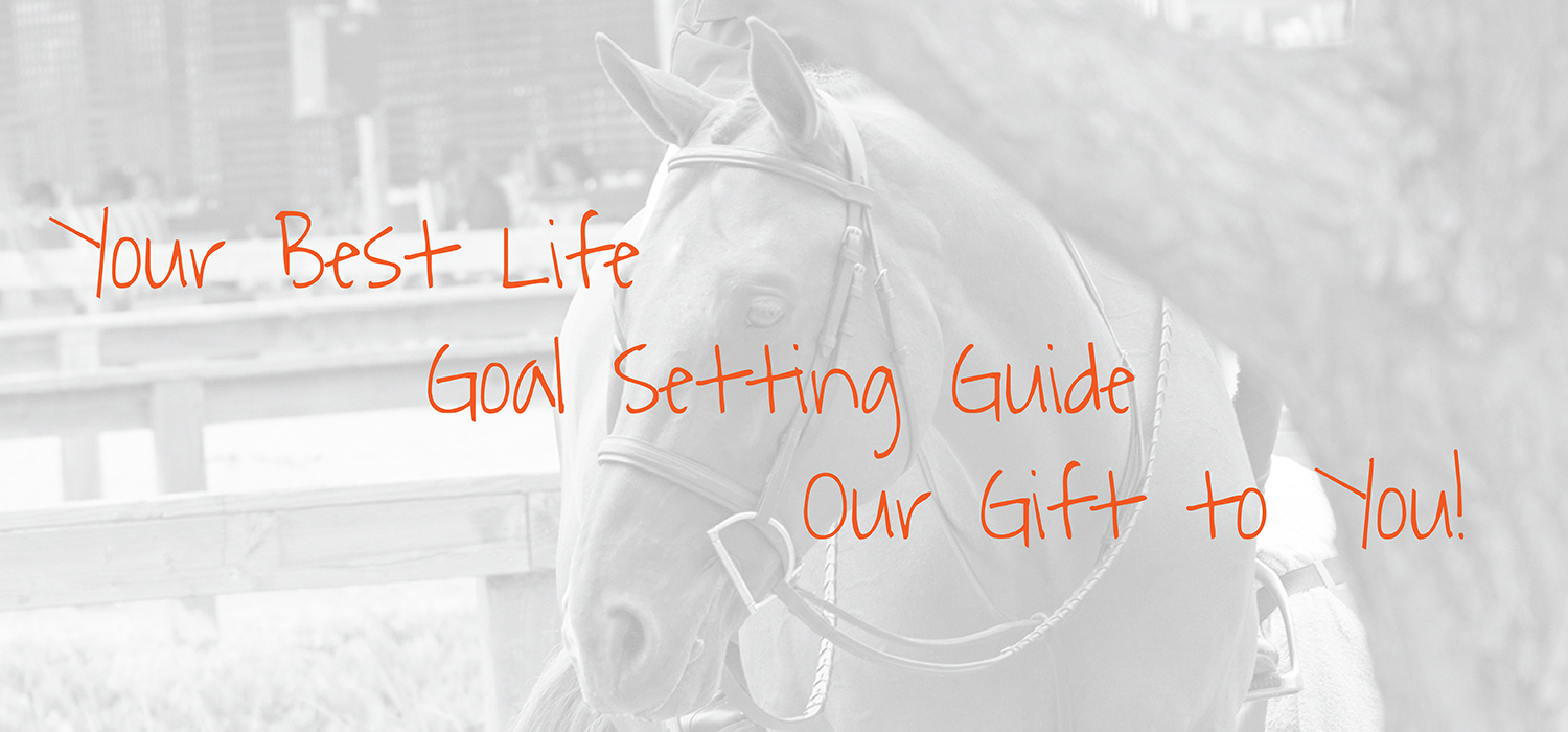 Your Best Life Goal Setting Guide from Decidedly Equestrian