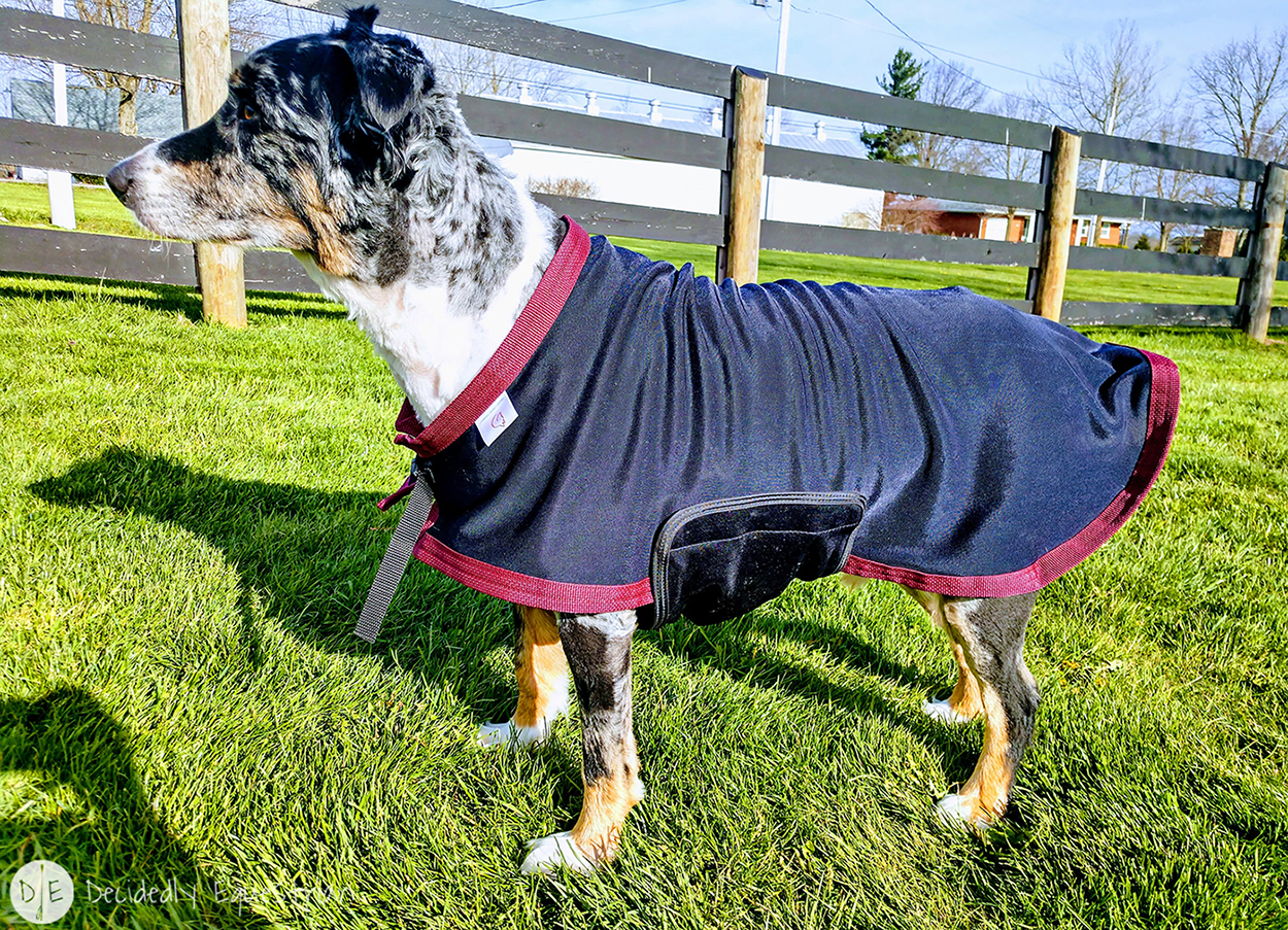 Draper Therapies Canine Sheet Review