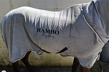 Horseware Rambo Dry Rug Review