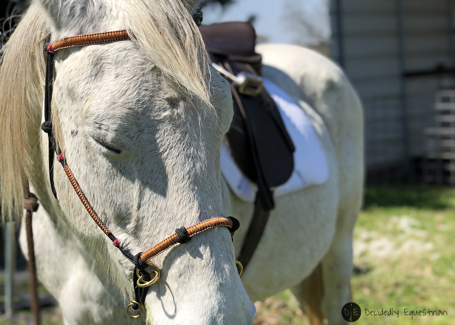 Knot Just Rope Hybrid Bitless Bridle Review