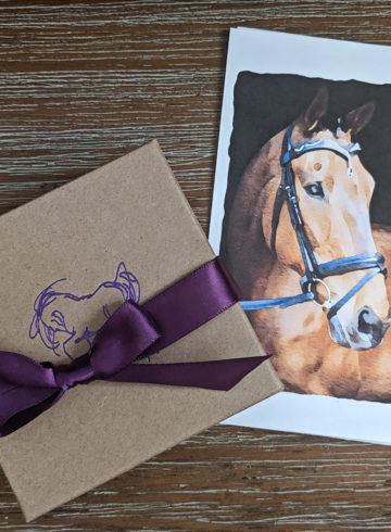 Spirit Horse Designs Review