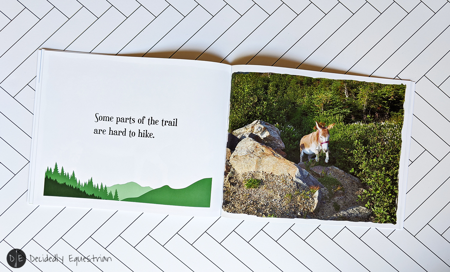 Take A Hike! A Donkey-Donk Story by Ellen F. Feld Book Review