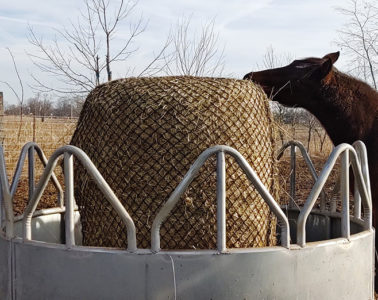 Hay Chix Large Bale Net 4x4 HEAVY DUTY