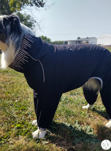 Hurtta Downpour Suit Review