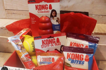 KONG Canine Subscription Box Review