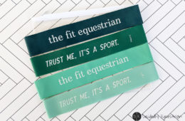 The Fit Equestrian Resistance Bands and Workout Review