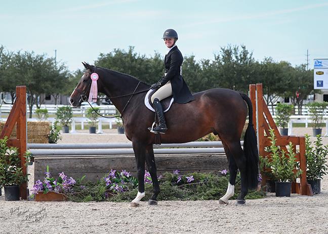 Company Spotlight: Equestrian Closet